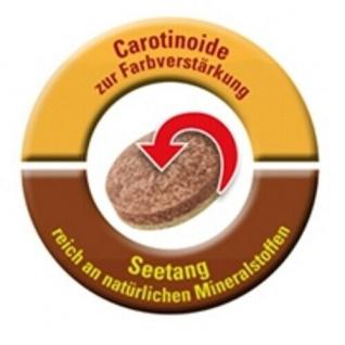 Tetra Tips 450x Futter-Tabletten Fisch-Futter Zierfischfutter Hafttabletten Tabs - Vorschau 4
