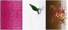 "PACK 3x Netbook Aufkleber Cover 11"" 11, 6"" Notebook Skin Sticker Schutz-Folie"
