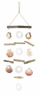 Muschelhänger mit Treibholz, 15 x 40 cm