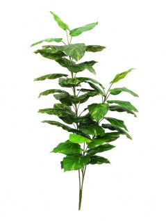 EUROPALMS Pothos, 3-fach, Kunstpflanze, 150cm