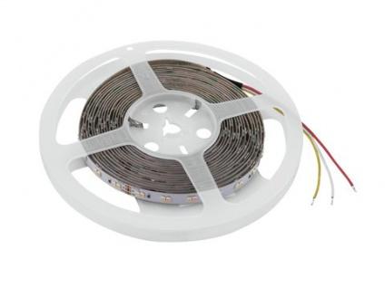 EUROLITE LED Strip 600 5m 3528 2700+5700K 24V