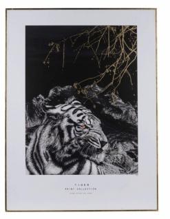 Canvasbild, Tiger, Holzrahmen, 60 x 3 x 80 cm