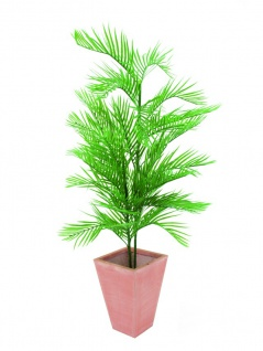EUROPALMS Kentiapalme, künstlich, 150cm