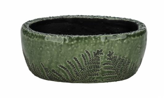 Keramikschale mit Farn, grün, 19, 5 x 13 x 8 cm