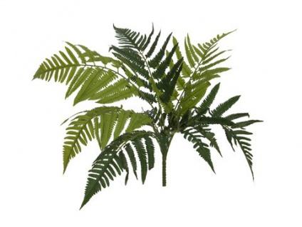 EUROPALMS Frauenfarn, Kunstpflanze, 60cm