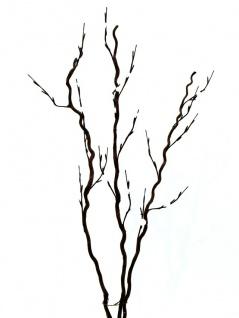 EUROPALMS Korkenzieher-Zweig, mit LEDs, weiß, 120cm