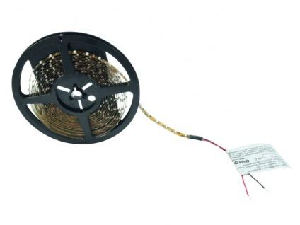 EUROLITE LED Strip 300 5m 3528 6500K 12V