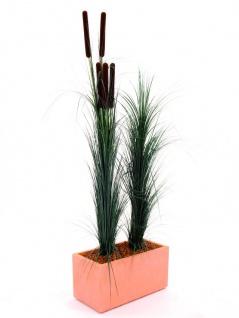 EUROPALMS Schilfgras, dunkelgrün, 127cm - Vorschau