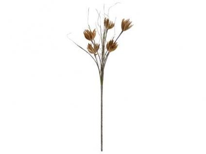 EUROPALMS Artischocken Zweig (EVA), beige, 100cm