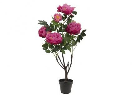 EUROPALMS Pfingstrose, rosé, Kunstpflanze, 90cm