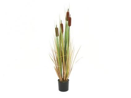 EUROPALMS Rohrkolben, Kunstpflanze, 150cm