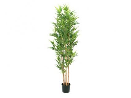 EUROPALMS Bambus deluxe, Kunstpflanze, 150cm - Vorschau