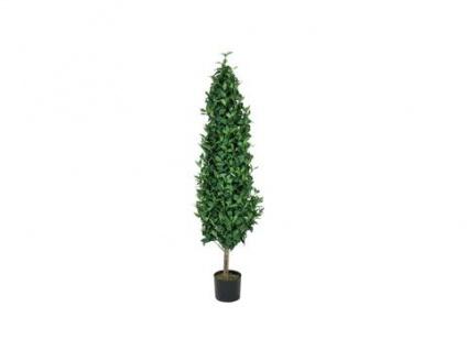 EUROPALMS Lorbeerkegelbaum, Kunstpflanze, 150cm