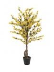 EUROPALMS Forsythienbaum mit 4 Stämmen, gelb, 120 cm
