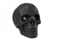 EUROPALMS Halloween Totenkopf 35x35cm mit LED