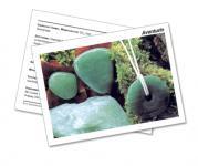 Infokarte / Mineralienkarte Aventurin grün