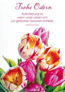 Postkarte Christa Carina Kokol Frohe Ostern Tulpen mit Adressfeld 10 Stck