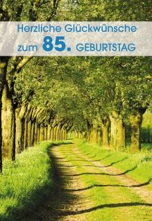 Glückwunschkarte 85. Geburtstag 6 St Kuvert Allee Frühling Bäume Segen Schutz