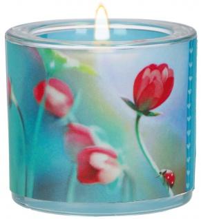 Windlicht Tulpen Da wo Liebe ist Glas 6 cm inkl Teelicht Dietrich Bonhoeffer
