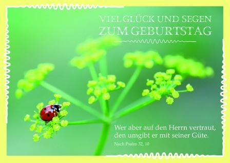 Postkarte Geburtstag Viel Glück und Segen (10 Stck) Glückwunschkarte