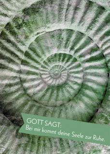 Postkarte Gott sagt: Bei mir kommt deine Seele zur Ruhe (10 St) Spirale H. Rose