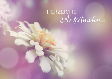 Trauerkarte Anteilnahme 6 St Kuvert Irmgard Erath Auferstehung Beistand Glaube