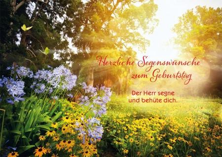 Postkarte Geburtstag 10 St Adressfeld Bibelwort Segen Schutz Blumen Gratulation