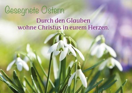 Postkarte Epheser Lutherbibel Gesegnete Ostern Schneeglöckchen 10 Stck