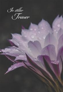 Trauerkarte In stiller Trauer (6 St) Dietrich Bonhoeffer Grußkarte Kuvert