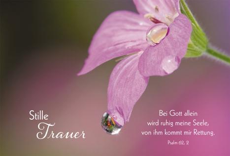 Trauerkarte Maria Wiesinger 6 St Kuvert Bibel Meditation Gott Trost Vertrauen