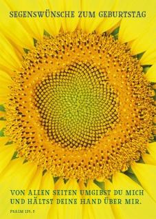 Postkarte Segenswünsche zum Geburtstag (10 St) Sonnenblume Psalm Lutherbibel