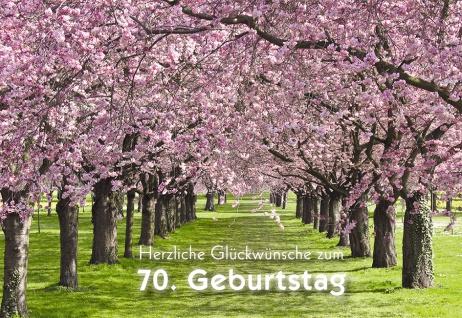 Geburtstagskarte 70. Herzliche Glückwünsche (6 Stck) Glückwunschkarte Kuvert - Vorschau