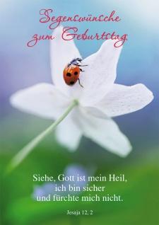 Postkarte Segenswünsche zum Geburtstag (10 St) Psalm Jesaja Lutherbibel