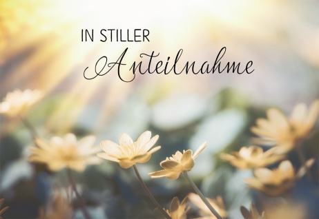 Trauerkarte Anteilnahme Adalbert Ludwig Balling 6 St Kuvert Erinnerung Segen