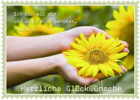 Postkarte zum Geburtstag Herzliche Glückwünsche (10 Stck)