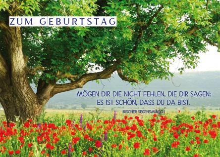 Postkarte Geburtstag Irischer Segenswunsch Mohnblumen 10 Stck Adressfeld Segen