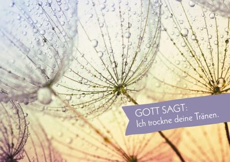 Trauerkarte Ich trockne deine Tränen Postkarte (10 St) Grußkarte Adressfeld