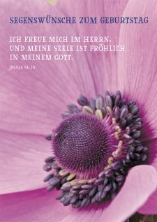 Postkarte Segenswünsche zum Geburtstag (10 St) Blume Jesaja Lutherbibel