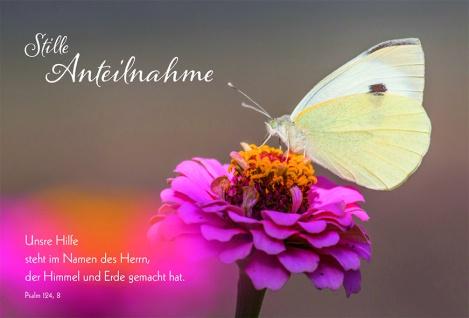 Trauerkarte Stille Anteilnahme Psalm 124 (6 Stck) Beileidskarten Kondolenzkarte
