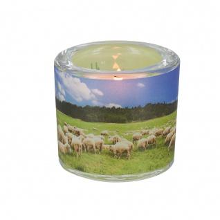 Glaswindlicht Der Herr inkl Teelicht Kerzenhalter Geschenkbox Glas für Windlicht
