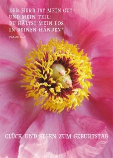 Postkarte Glück und Segen zum Geburtstag (10 St) Blume Psalm Lutherbibel