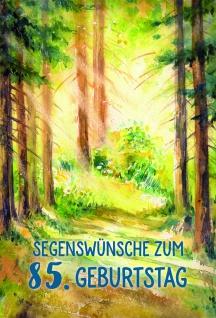Glückwunschkarte 85. Geburtstag Matthäus 6 St Kuvert Bibelzitat Segenswünsche