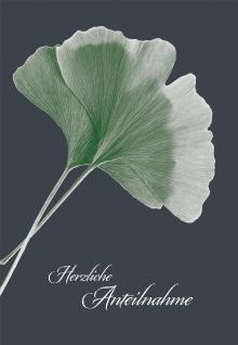 Trauerkarte Herzliche Anteilnahme (6 St) Grußkarte Kuvert Gingkoblätter