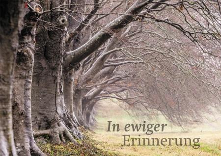 Trauerkarte In ewiger Erinnerung farbiges Kuvert (6 St) Motiv Bäume
