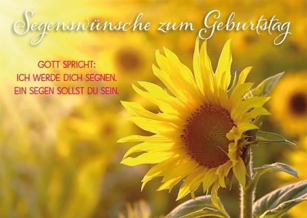 Postkarte Geburtstag Sonnenblume 10 St Adressfeld Bibelwort Segen Begleitung