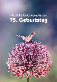 Geburtstagskarte 75. Herzliche Glückwünsche (6 Stck) Glückwunschkarte Kuvert