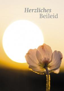 Trauerkarte Herzliches Beileid Dietrich Bonhoeffer (6 St) Grußkarte Kuvert
