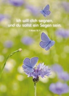 Postkarte Ich will dich segnen (10 St) Schmetterlinge und Kornblume Lutherbibel