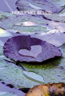 Trauerkarte Herzliches Beileid (6 Stck) Textvorschläge für Kondolenzkarte