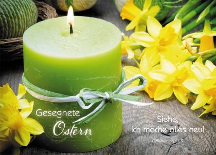 Postkarte Gesegnete Ostern (10 St) Grüne Kerze und Narzissen Lutherbibel